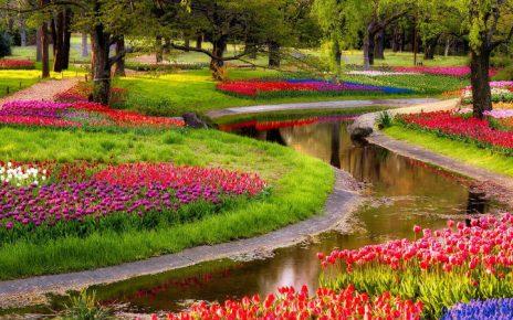 Jardines con flores todo el ano