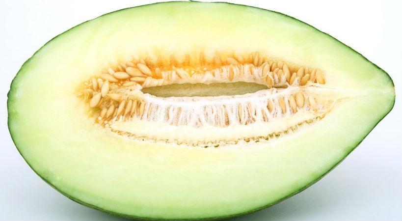 Melon fruta de verano