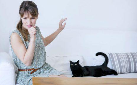 Consejos para personas alergicas a los gatos