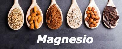 Elemento esencial Magnesio