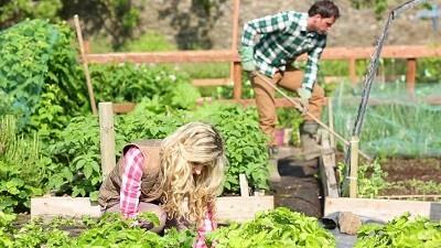 Plantar en Jardin