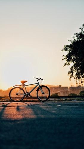 Reparacion y el mantenimiento profesional de una bicicleta