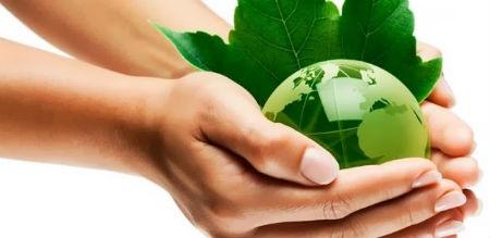 El ser humano y su relación con el ecosistema