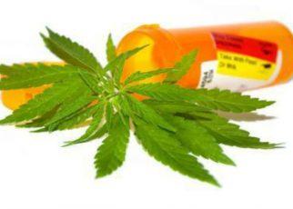 CBD en tratamiento de varias afecciones