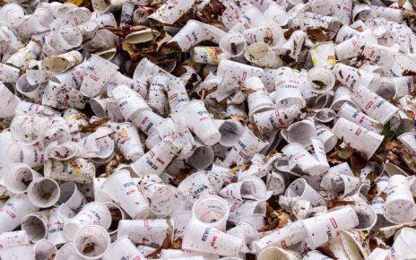 Problemática del plástico