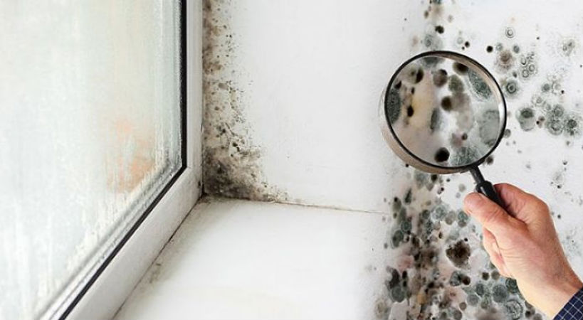 Problemas de humedad en el hogar