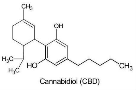 Productos con cannabidiol