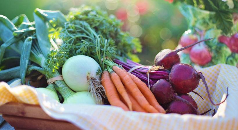 Objetivo vida saludable