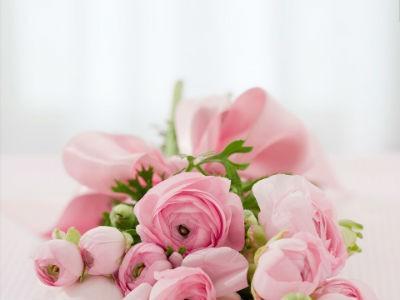 Los colores de las rosas